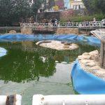 دریاچه تفریحی با ورق ژئوممبران